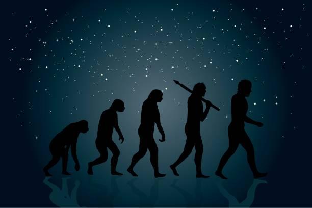 mapa conceptual de la evolucion del hombre