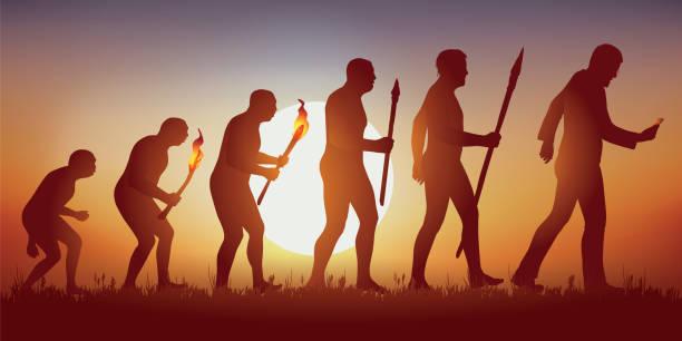mapa conceptual de la teoria de la evolucion del hombre