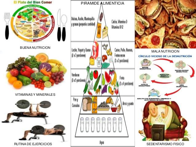 mapa mental de la nutricion