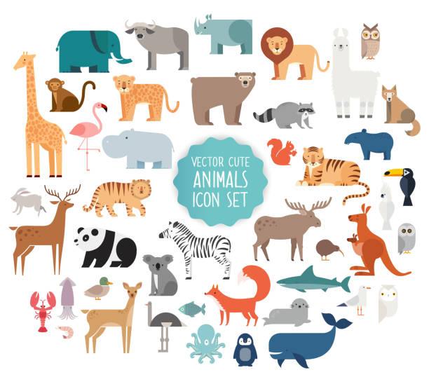 mapa mental de animales vertebrados e invertebrados