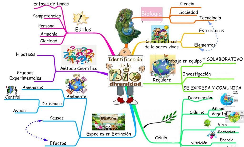 mapa mental de la biodiversidad en mexico