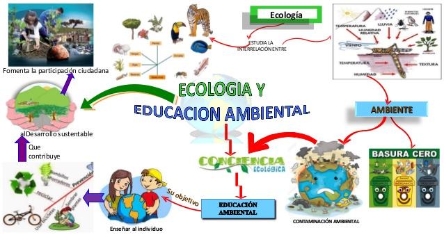 mapa mental de ecologia de poblaciones