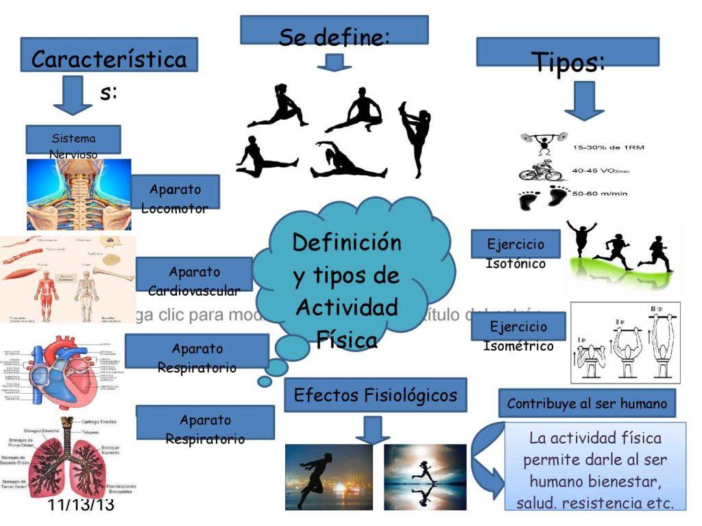 mapa mental de educacion fisica y salud
