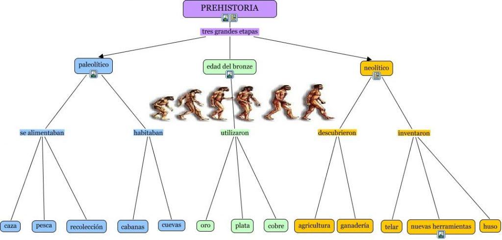 mapa mental de la evolución humana