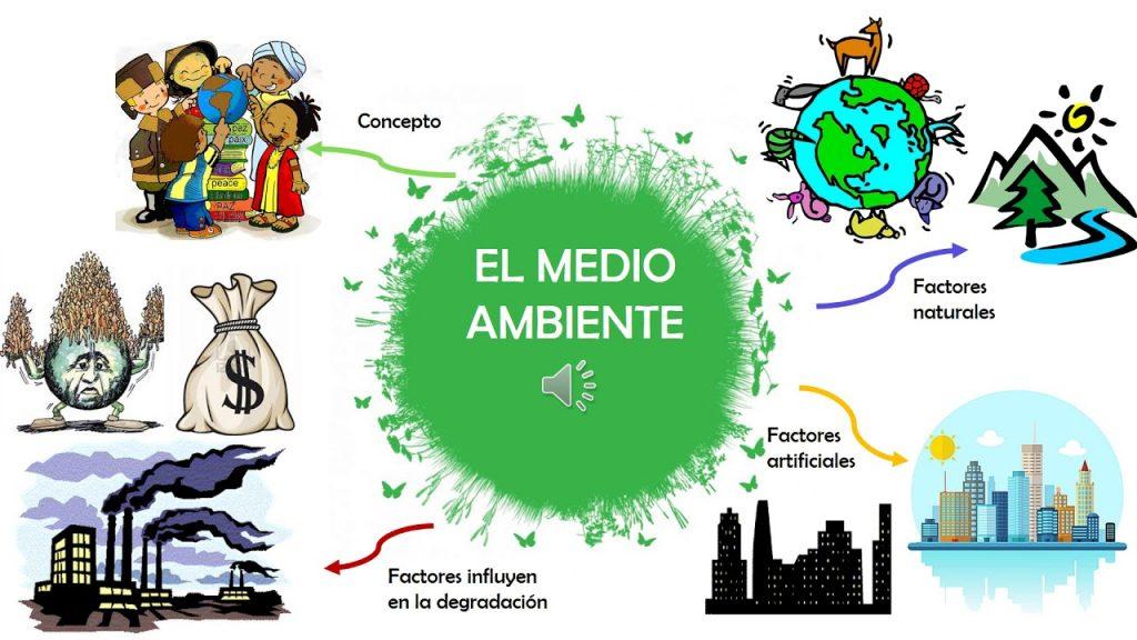 mapa mental del medio ambiente para niños
