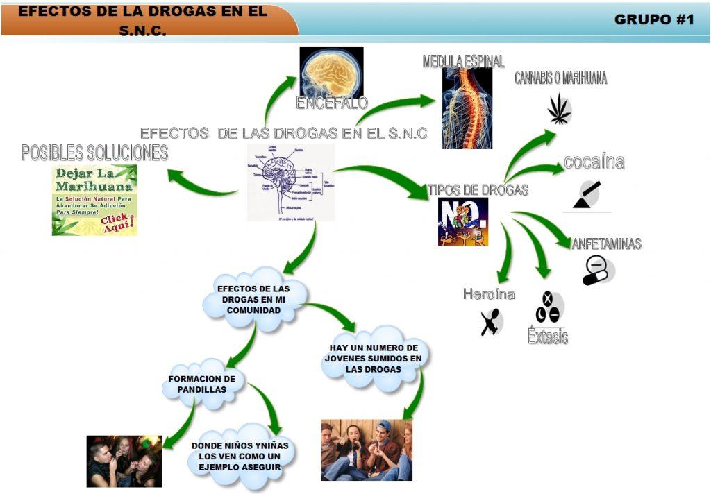 mapa mental de las drogas legales e ilegales