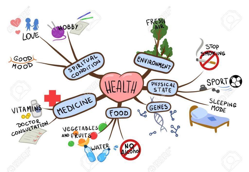 mapa mental biologia
