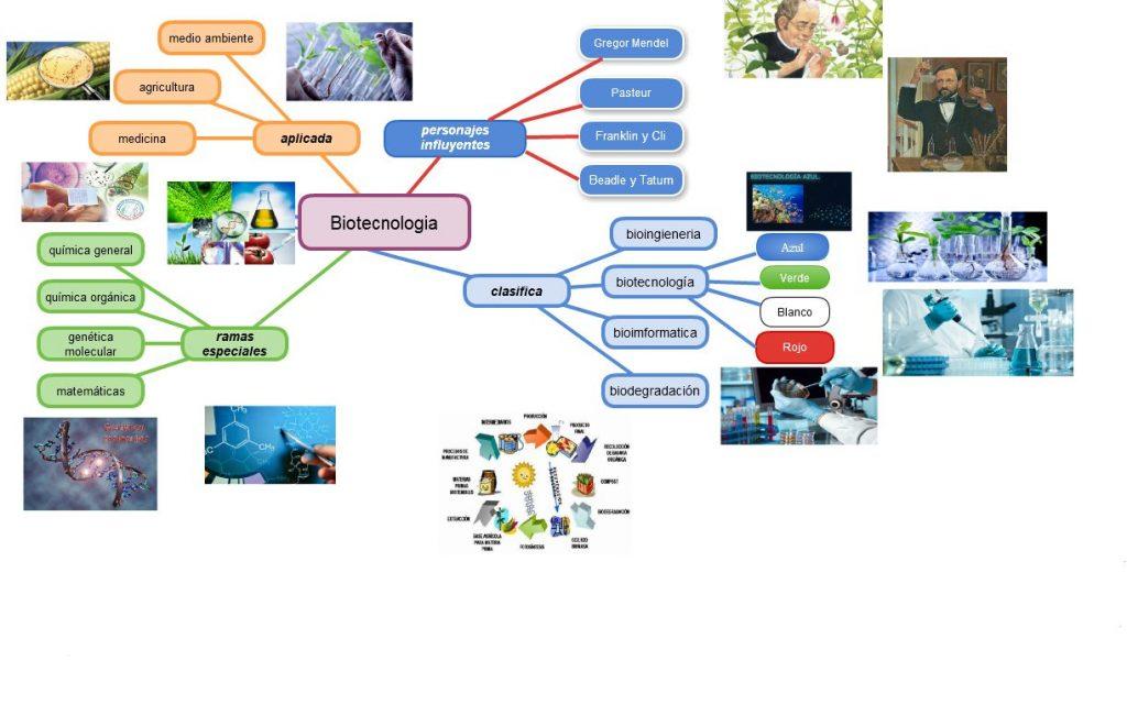 mapa mental de la biotecnologia moderna